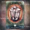 Карты Души Mystic Silk (Soul Cards Mystic Silk)